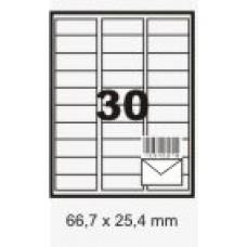 Etiqueta Branca 66,7 X 25,4 Mm C/ 100 Fls